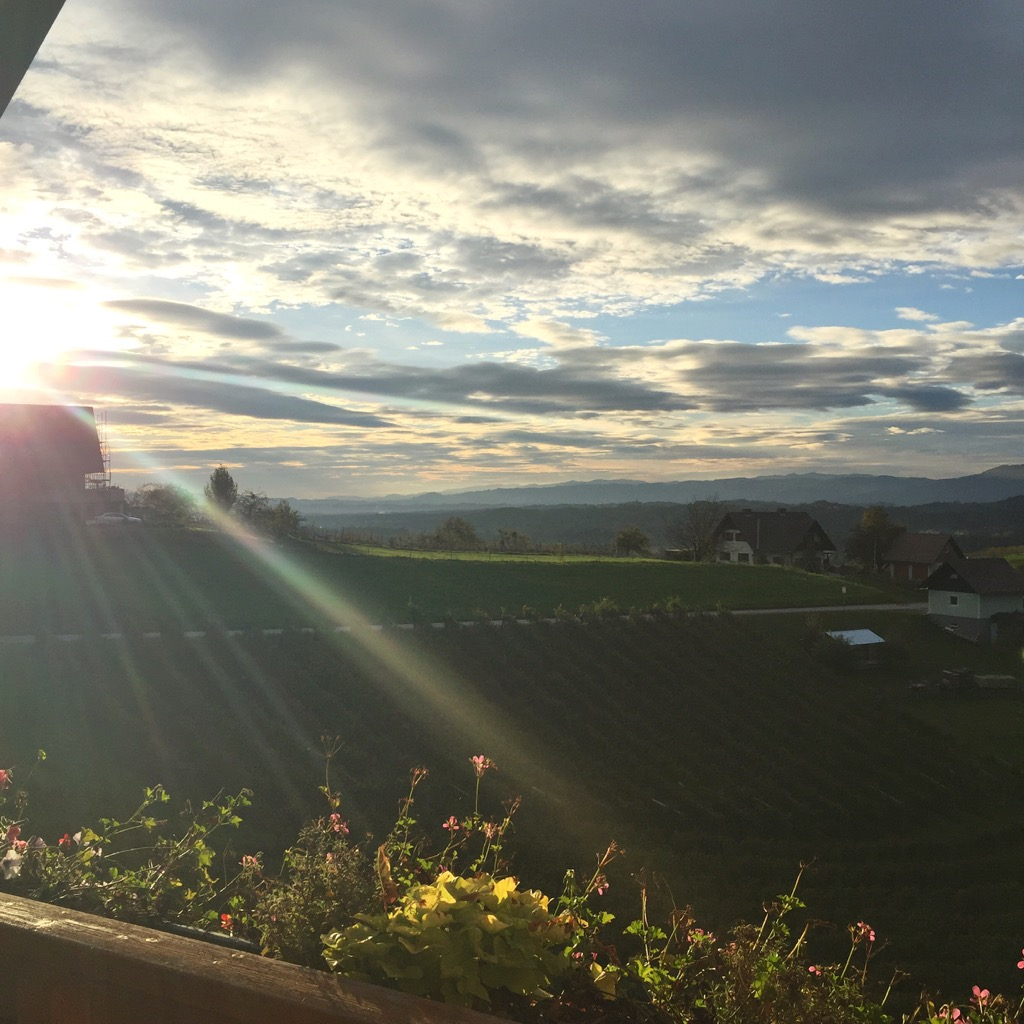 Steiermark-Weinberge-Sonne-Wolken