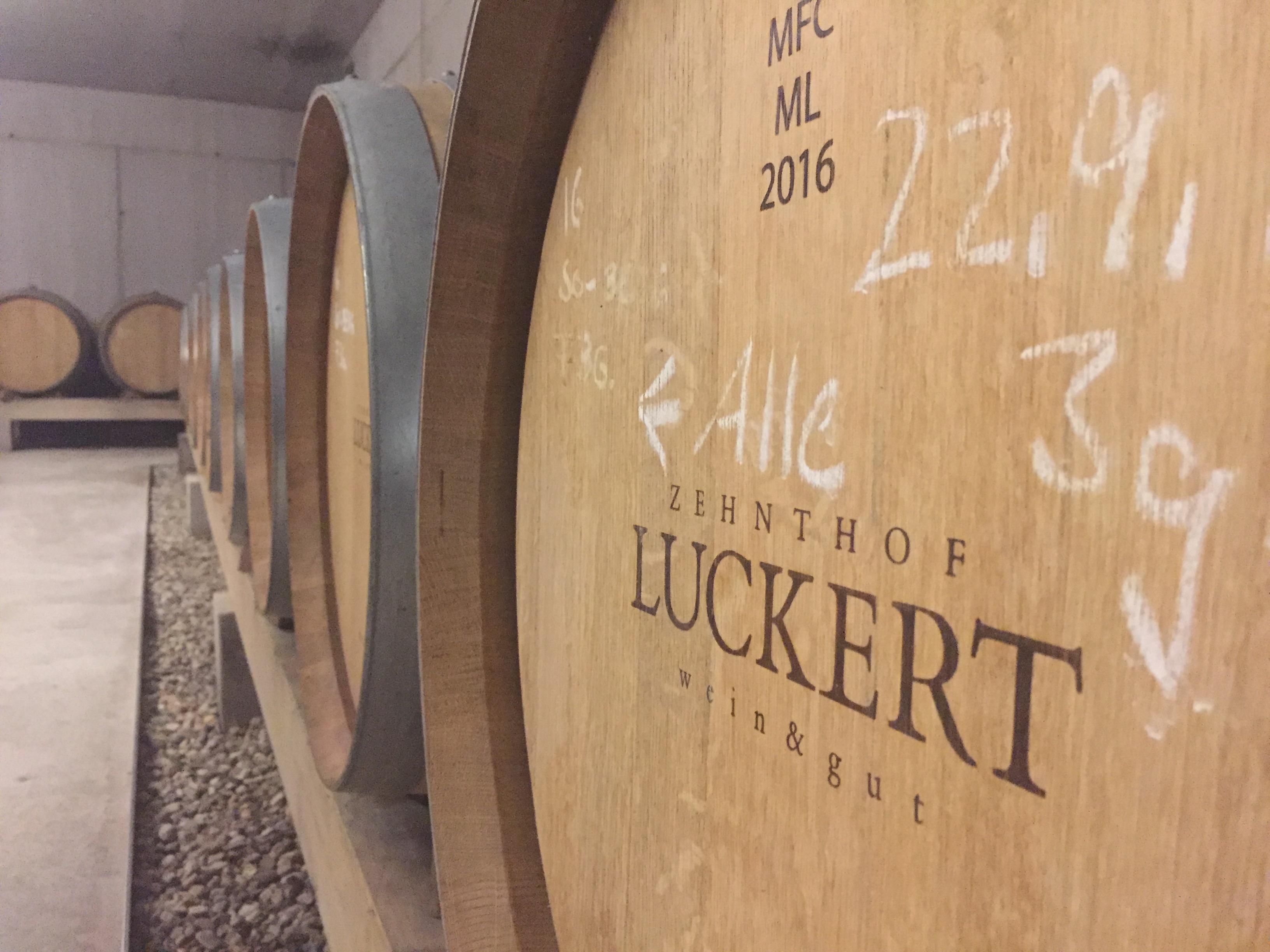Weingut_Luckert